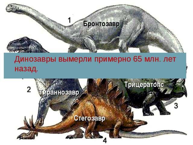 Стегозавр Трицератопс Тираннозавр Динозавры вымерли примерно 65 млн. лет наза...