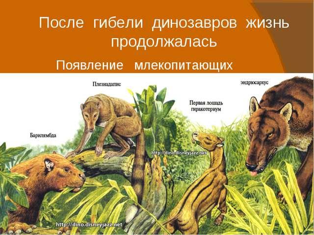 После гибели динозавров жизнь продолжалась Появление млекопитающих