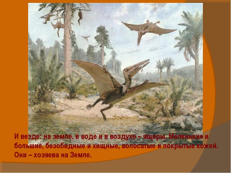 И везде: на земле, в воде и в воздухе – ящеры. Маленькие и большие, безобидны...
