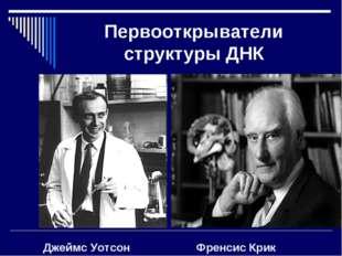 Первооткрыватели структуры ДНК Джеймс Уотсон Френсис Крик