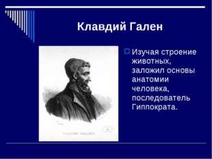 Клавдий Гален Изучая строение животных, заложил основы анатомии человека, пос