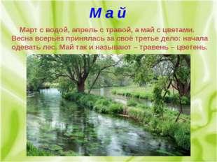 М а й Март с водой, апрель с травой, а май с цветами. Весна всерьёз принялась