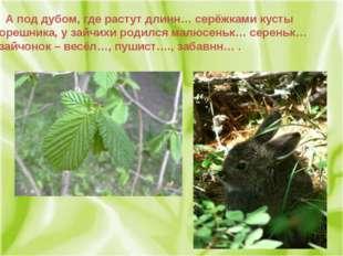 А под дубом, где растут длинн… серёжками кусты орешника, у зайчихи родился м