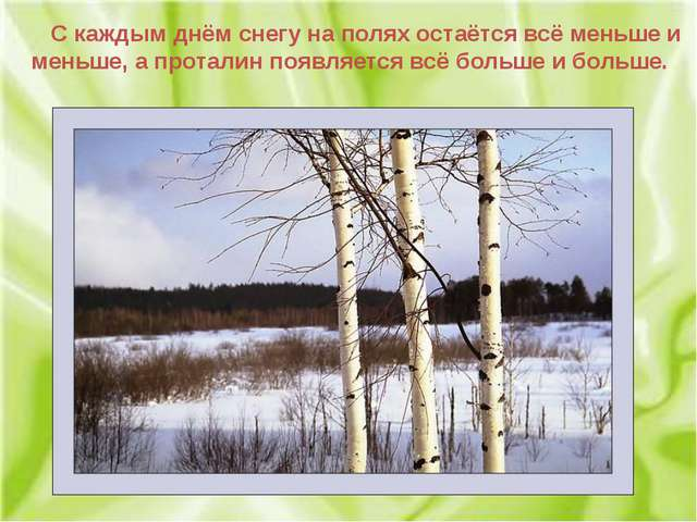 С каждым днём снегу на полях остаётся всё меньше и меньше, а проталин появля...