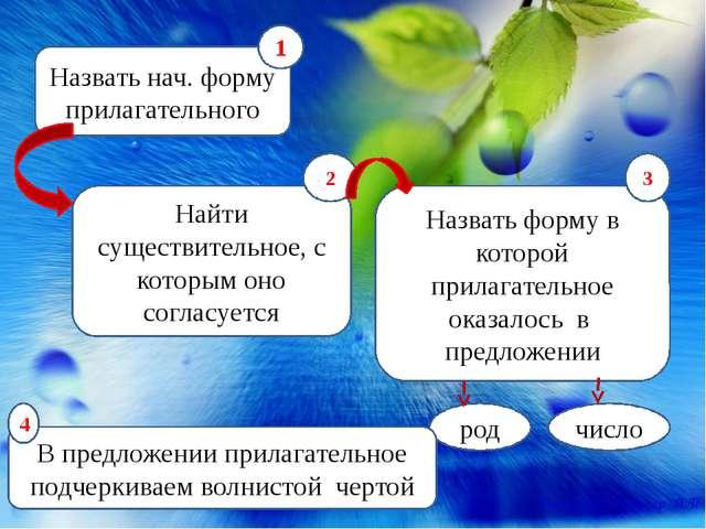 Назвать нач. форму прилагательного Найти существительное, с которым оно согла...