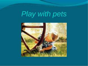 Play with pets