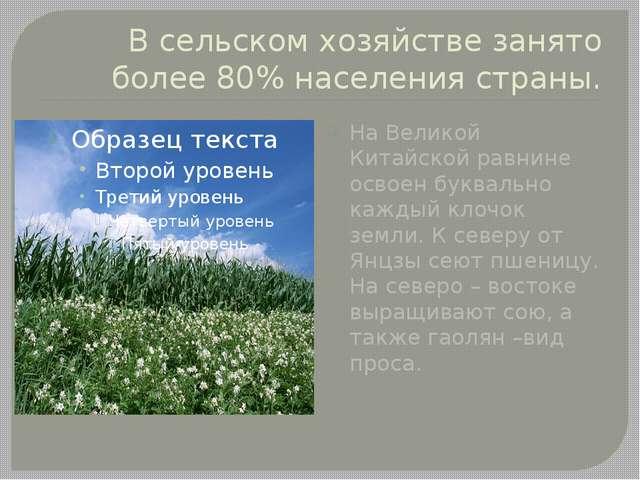 В сельском хозяйстве занято более 80% населения страны. На Великой Китайской...