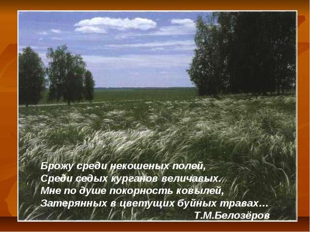 Брожу среди некошеных полей, Среди седых курганов величавых. Мне по душе поко...
