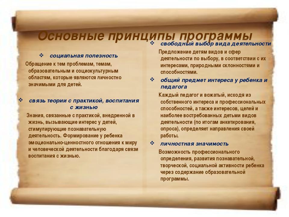 Основные принципы программы социальная полезность Обращение к тем проблемам,...