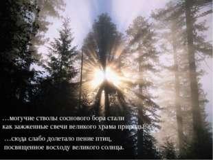 …могучие стволы соснового бора стали как зажженные свечи великого храма приро