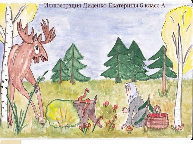 Иллюстрация Диденко Екатерины 6 класс А