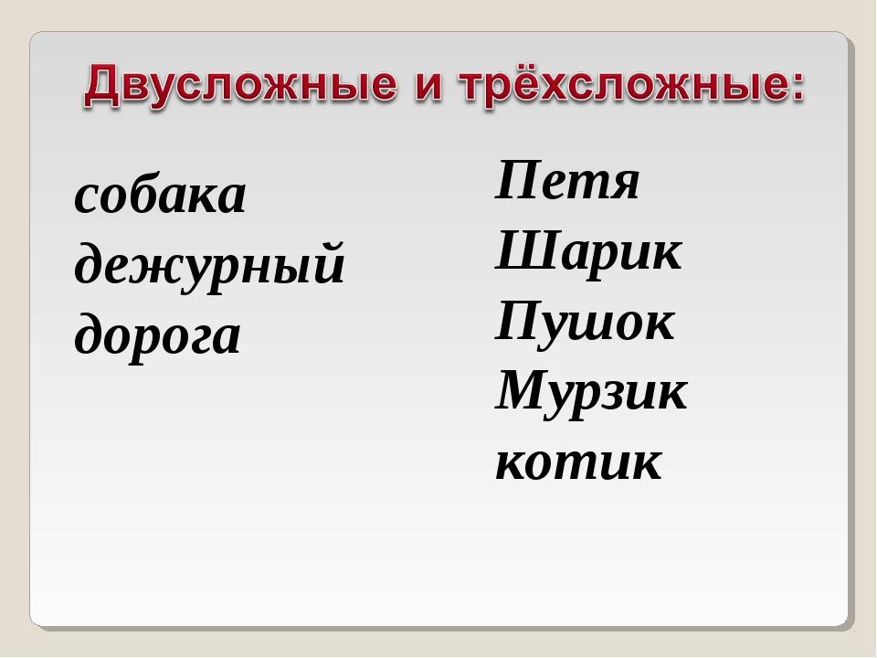 собака дежурный дорога Петя Шарик Пушок Мурзик котик