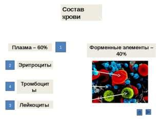 Функции эритроцитов дыхательная ферментативная питательная защитная