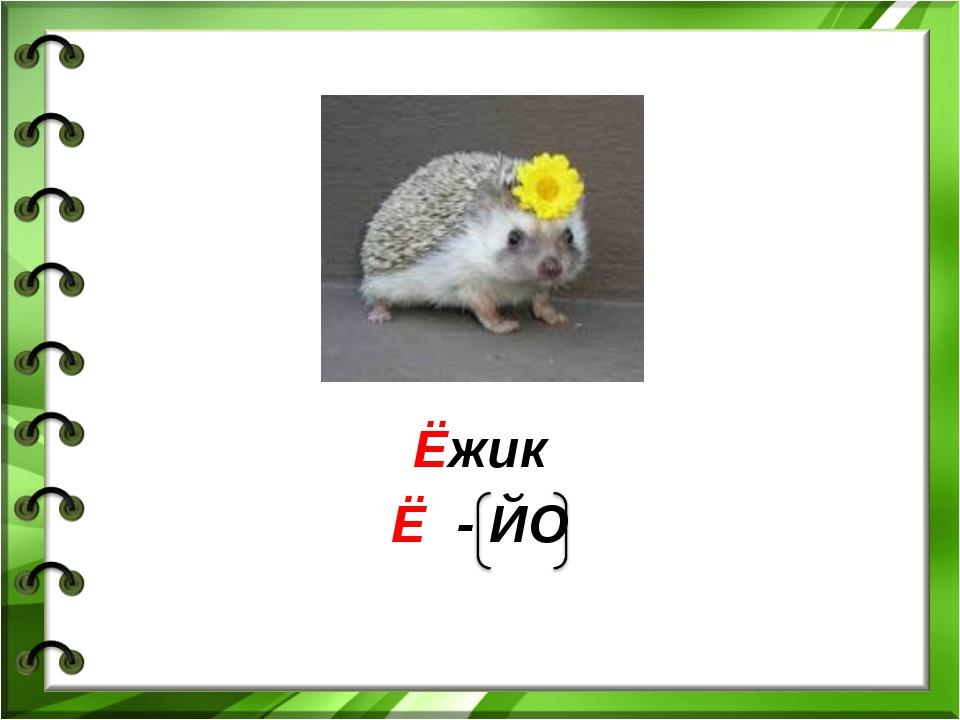Ёжик Ё - ЙО
