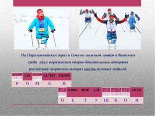 На Паралимпийских играх в Сочи по лыжным гонкам и биатлону среди лиц с пораже