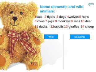 Name domestic and wild animals: 1cats 2 tigers 3 dogs 4wolves 5 hens 6 cows 7
