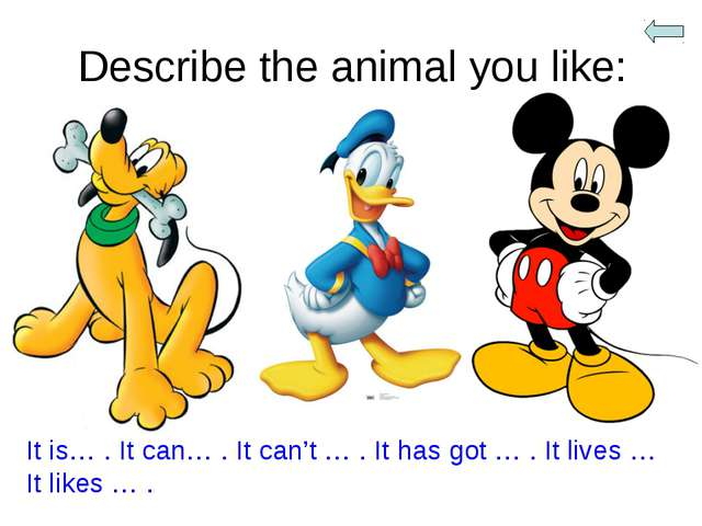 Describe the animal you like: It is… . It can… . It can't … . It has got … ....