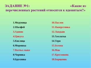 ЗАДАНИЕ №1: «Какие из перечисленных растений относятся к ядовитым?» 1.Медуниц
