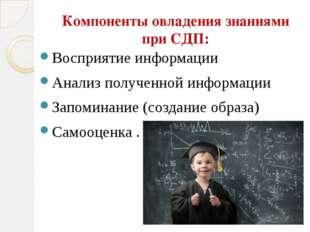 Компоненты овладения знаниями при СДП: Восприятие информации Анализ полученно