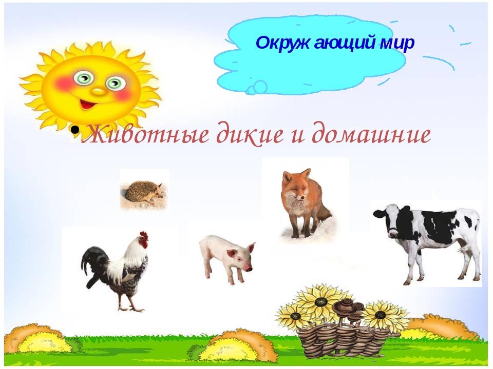 Животные дикие и домашние Окружающий мир