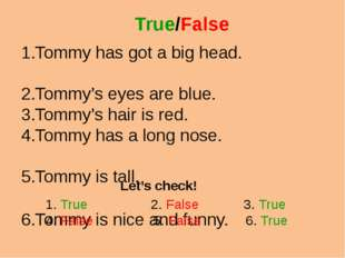 True/False Tommy has got a big head. Tommy's eyes are blue. Tommy's hair is r