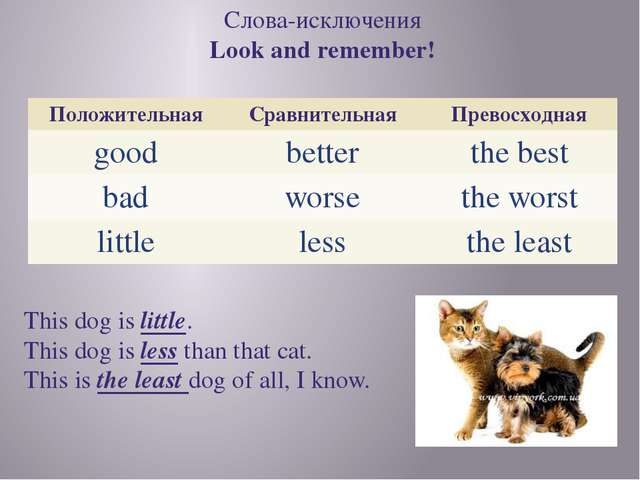 Слова-исключения Look and remember! This dog is little. This dog is less than...