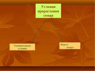Условия прорастания семян Температурные условия Вода и воздух