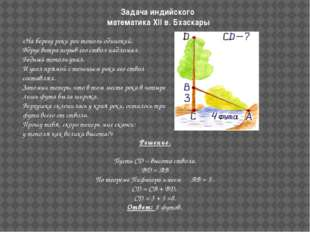 Задача индийского математика XII в. Бхаскары  «На берегу реки рос тополь оди