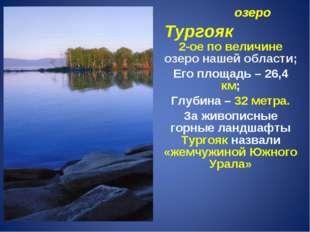 озеро Тургояк 2-ое по величине озеро нашей области; Его площадь – 26,4 км; Г
