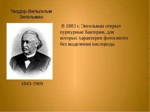 Теодор-Вильгельм Энгельман 1843-1909 В 1883 г. Энгельман открыл пурпурные бак
