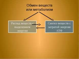 Обмен веществ или метаболизм Распад веществ с выделением энергии Синтез вещес