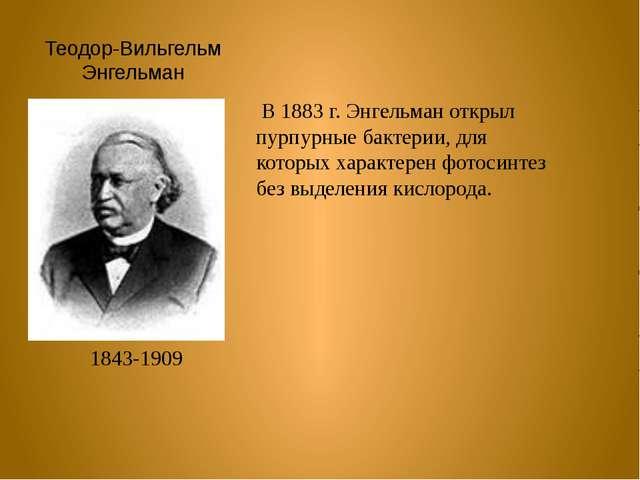 Теодор-Вильгельм Энгельман 1843-1909 В 1883 г. Энгельман открыл пурпурные бак...