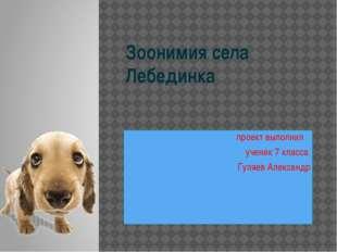 Зоонимия села Лебединка проект выполнил ученик 7 класса Гуляев Александр