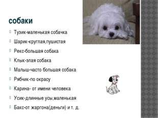 собаки Тузик-маленькая собачка Шарик-круглая,пушистая Рекс-большая собака Клы