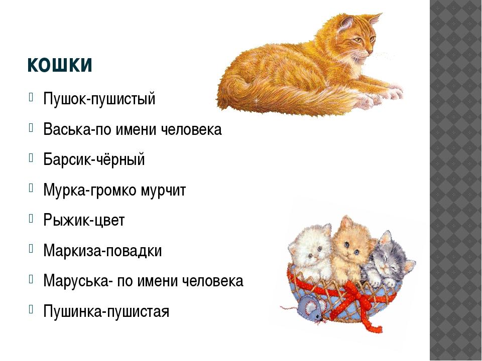 кошки Пушок-пушистый Васька-по имени человека Барсик-чёрный Мурка-громко мурч...
