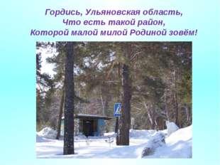 Гордись, Ульяновская область, Что есть такой район, Которой малой милой Родин