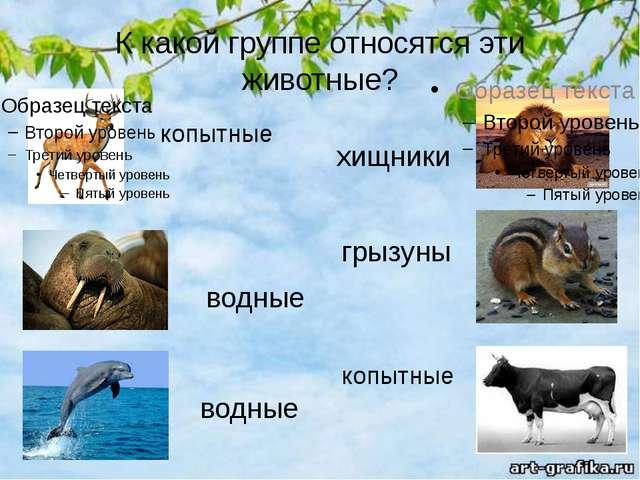 К какой группе относятся эти животные? водные копытные водные копытные грызун...