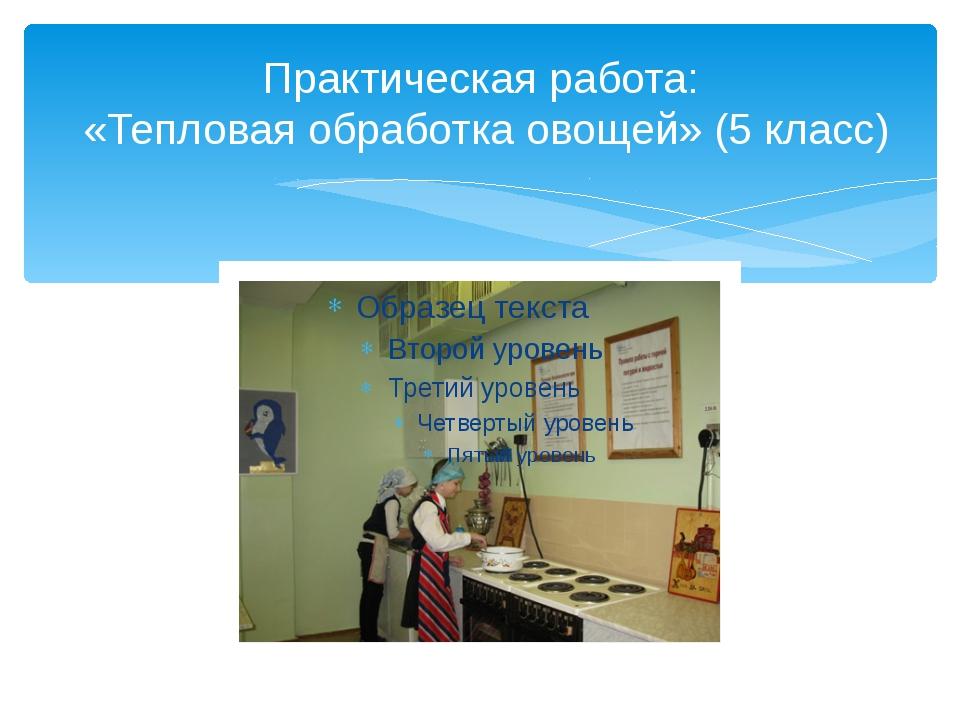 Практическая работа: «Тепловая обработка овощей» (5 класс)