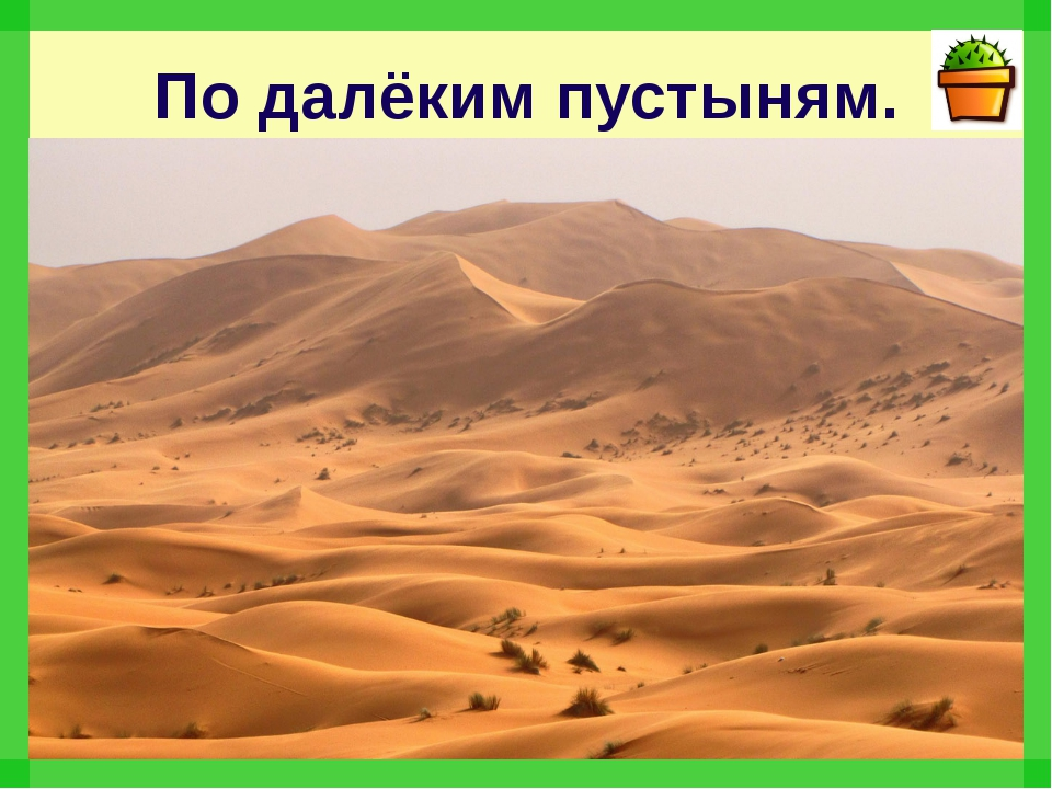 По далёким пустыням.