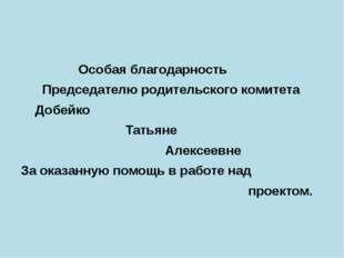 Особая благодарность Председателю родительского комитета Добейко Татьяне Але