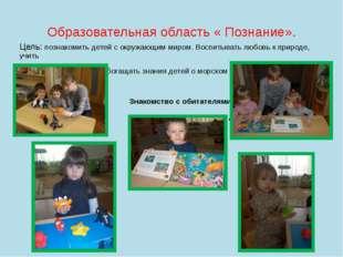 Образовательная область « Познание». Цель: познакомить детей с окружающим мир