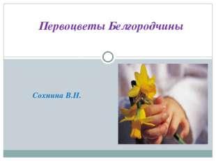 Сохнина В.Н. Первоцветы Белгородчины