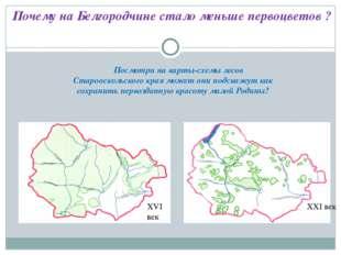 Посмотри на карты-схемы лесов Старооскольского края может они подскажут как