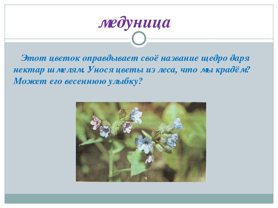 Этот цветок оправдывает своё название щедро даря нектар шмелям. Унося цветы...