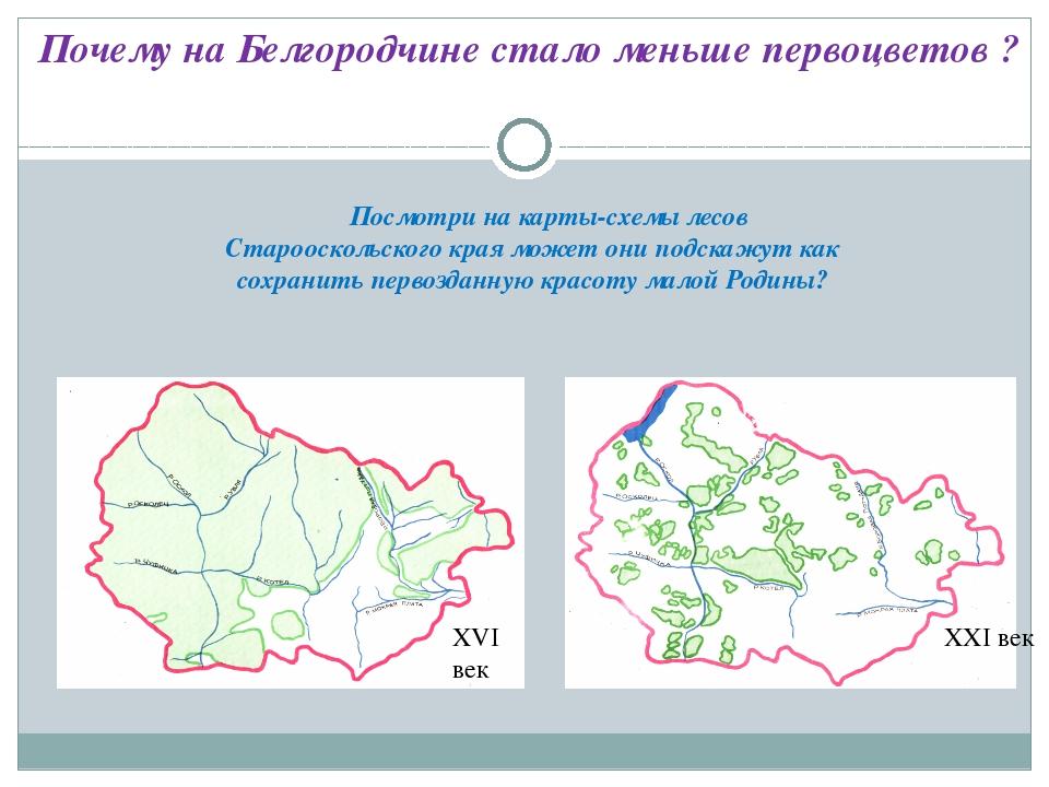 Посмотри на карты-схемы лесов Старооскольского края может они подскажут как...