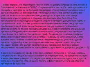Меры охраны. На территории России охота на дрофу запрещена. Вид внесен в Прил