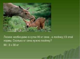 Лосихе необходимо в сутки 90 кг сена , а лосёнку,1/3 этой нормы. Сколько кг