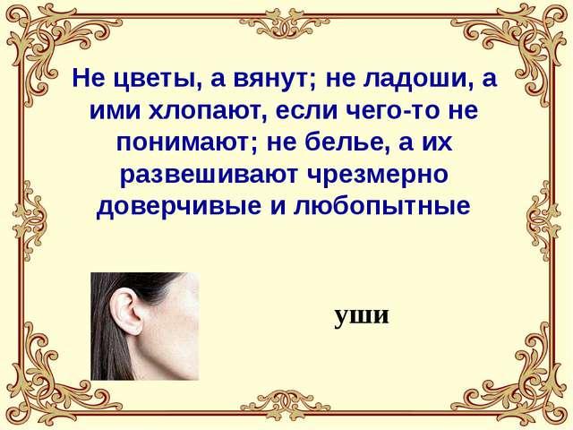 Он в голове у легкомысленного, несерьезного человека; его советуют искать в...
