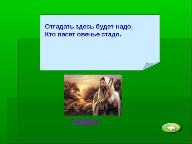 Отгадать здесь будет надо, Кто пасет овечье стадо. Чабан