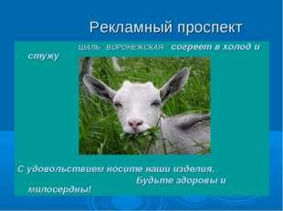 Рекламный проспект ШАЛЬ ВОРОНЕЖСКАЯ согреет в холод и стужу С удовольствием